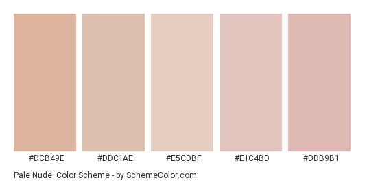 Pale Nude - Color scheme palette thumbnail - #dcb49e #ddc1ae #e5cdbf #e1c4bd #ddb9b1