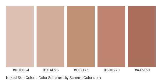 Naked Skin Colors - Color scheme palette thumbnail - #ddc0b4 #d1ae9b #c09175 #bd8270 #aa6f5d