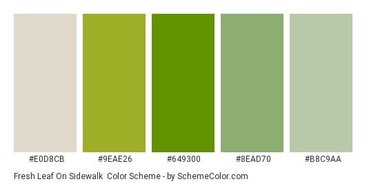 Fresh Leaf on Sidewalk - Color scheme palette thumbnail - #e0d8cb #9eae26 #649300 #8ead70 #b8c9aa