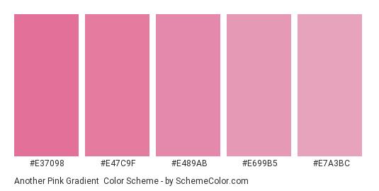 Another Pink Gradient - Color scheme palette thumbnail - #e37098 #e47c9f #e489ab #e699b5 #e7a3bc