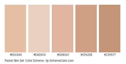 Pastel Skin Set - Color scheme palette thumbnail - #e6c0a5 #ead0c0 #ddb5a1 #cfa288 #c39577