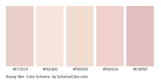 Rosey Skin - Color scheme palette thumbnail - #e7cec9 #f6e4dd #f0ddd0 #f0d0ca #e1bfbf