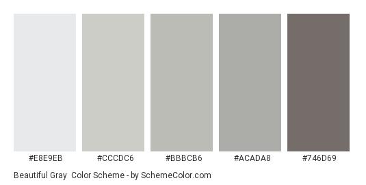 Beautiful Gray - Color scheme palette thumbnail - #e8e9eb #cccdc6 #bbbcb6 #acada8 #746d69