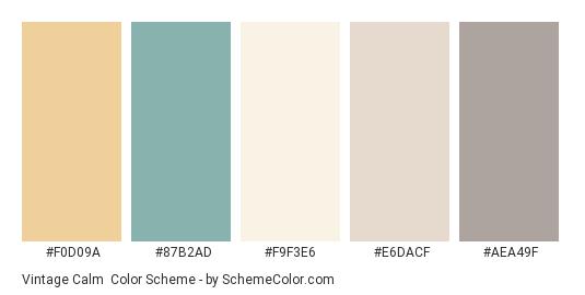 Vintage Calm - Color scheme palette thumbnail - #f0d09a #87b2ad #f9f3e6 #e6dacf #aea49f