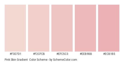 Pink Skin Gradient - Color scheme palette thumbnail - #f3d7d1 #f2cfcb #efc5c3 #eeb9bb #ecb1b5