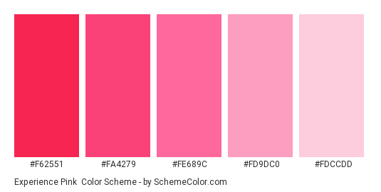 Experience Pink - Color scheme palette thumbnail - #f62551 #fa4279 #fe689c #fd9dc0 #fdccdd
