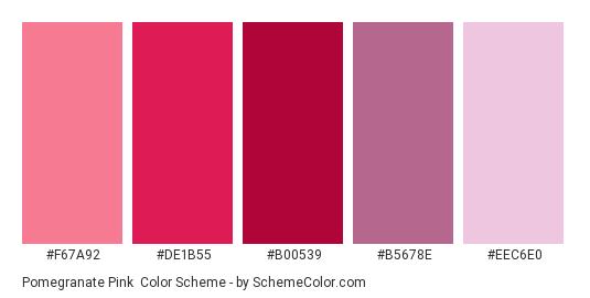 Pomegranate Pink - Color scheme palette thumbnail - #f67a92 #de1b55 #b00539 #b5678e #eec6e0