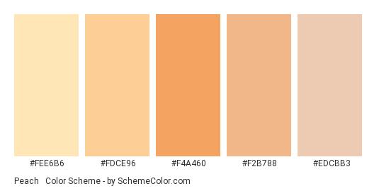 Peach & Sand - Color scheme palette thumbnail - #fee6b6 #fdce96 #f4a460 #f2b788 #edcbb3