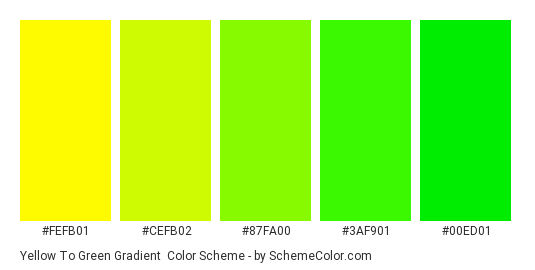 Yellow to Green Gradient - Color scheme palette thumbnail - #fefb01 #cefb02 #87fa00 #3af901 #00ed01