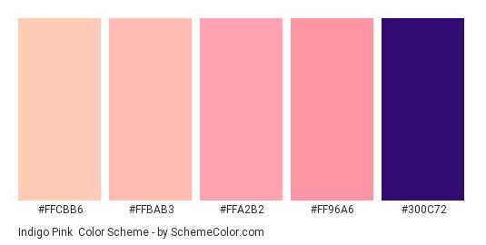 Indigo Pink - Color scheme palette thumbnail - #ffcbb6 #ffbab3 #ffa2b2 #ff96a6 #300c72