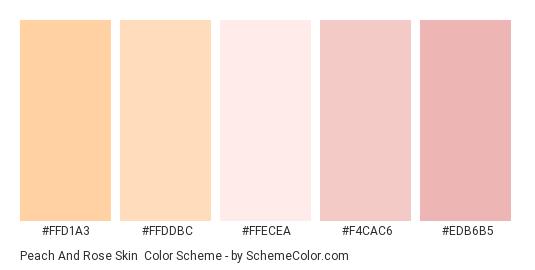 Peach and Rose Skin - Color scheme palette thumbnail - #ffd1a3 #ffddbc #ffecea #f4cac6 #edb6b5