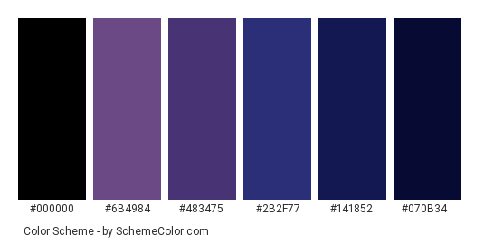 Night Sky - Color scheme palette thumbnail - #855988 #6b4984 #483475 #2b2f77 #141852 #070b34