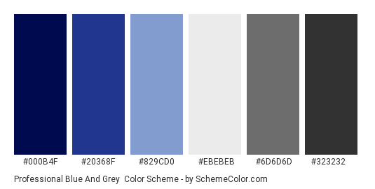 Professional Blue And Grey Color Scheme Palette Thumbnail 000b4f 20368f 829cd0