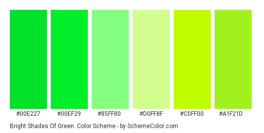 Bright Shades of Green - Color scheme palette thumbnail - #00e227 #00ef29 #85ff80 #d0ff8f #c0ff00 #a1f21d