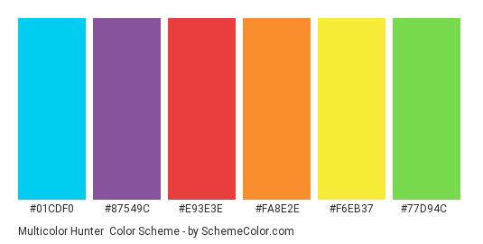 Multicolor Hunter - Color scheme palette thumbnail - #01cdf0 #87549c #e93e3e #fa8e2e #f6eb37 #77d94c