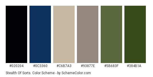 Stealth of Sorts - Color scheme palette thumbnail - #020204 #0c3360 #c6b7a3 #93877e #5b683f #384b1a