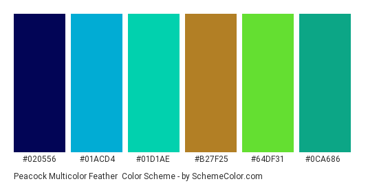 Peacock Multicolor Feather - Color scheme palette thumbnail - #020556 #01acd4 #01d1ae #b27f25 #64df31 #0ca686