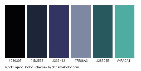 Rock Pigeon - Color scheme palette thumbnail - #030305 #1D2538 #333462 #7E88A3 #28595E #4FACA1