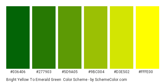 Bright Yellow to Emerald Green - Color scheme palette thumbnail - #036406 #277903 #5d9a05 #9bc004 #d3e502 #fffe00