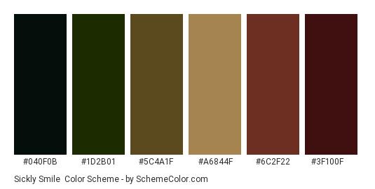 Sickly Smile - Color scheme palette thumbnail - #040f0b #1d2b01 #5c4a1f #a6844f #6c2f22 #3f100f