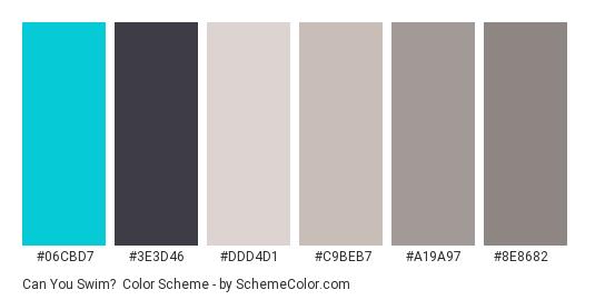 Can You Swim? - Color scheme palette thumbnail - #06cbd7 #3e3d46 #ddd4d1 #c9beb7 #a19a97 #8e8682