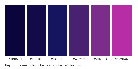 Night of Desire - Color scheme palette thumbnail - #0b053c #110c49 #14155e #482271 #7c2d8a #b62da6