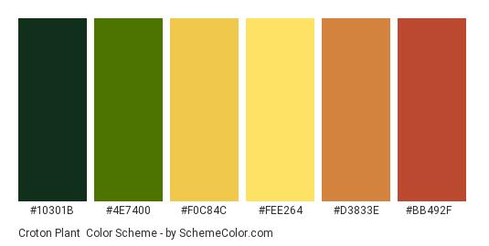 Croton Plant - Color scheme palette thumbnail - #10301B #4E7400 #F0C84C #FEE264 #D3833E #BB492F
