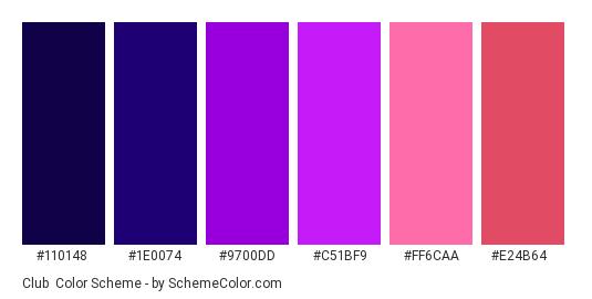 Club - Color scheme palette thumbnail - #110148 #1e0074 #9700dd #c51bf9 #ff6caa #e24b64