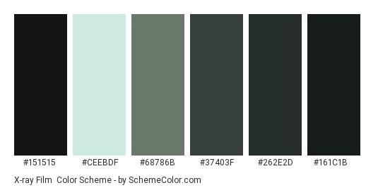 X-ray Film - Color scheme palette thumbnail - #151515 #ceebdf #68786b #37403f #262e2d #161c1b