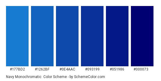 Navy Monochromatic - Color scheme palette thumbnail - #177BD2 #1262BF #0E4AAC #093199 #051986 #000073