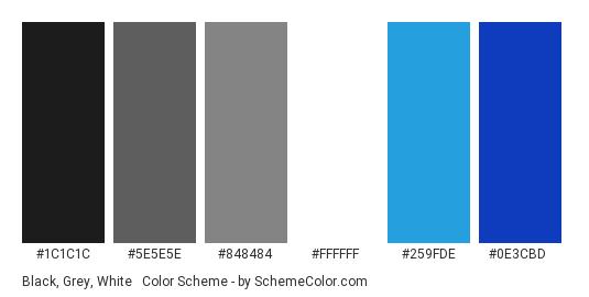 Black, Grey, White & Blue - Color scheme palette thumbnail - #1C1C1C #5E5E5E #848484 #FFFFFF #259FDE #0E3CBD