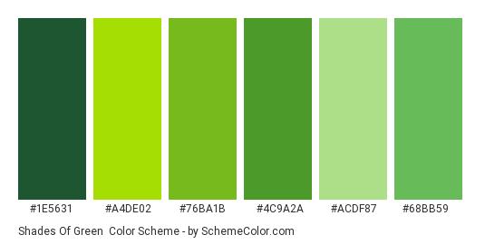 Shades of Green - Color scheme palette thumbnail - #1E5631 #A4DE02 #76BA1B #4C9A2A #ACDF87 #68BB59