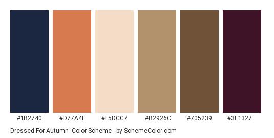 Dressed for Autumn - Color scheme palette thumbnail - #1b2740 #d77a4f #f5dcc7 #b2926c #705239 #3e1327