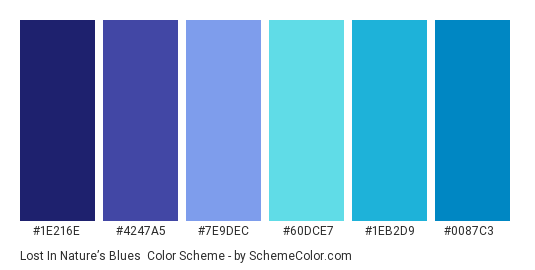 Lost in Nature's Blues - Color scheme palette thumbnail - #1e216e #4247a5 #7e9dec #60dce7 #1eb2d9 #0087c3