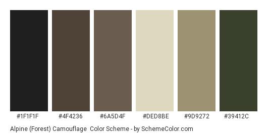 Alpine (Forest) Camouflage - Color scheme palette thumbnail - #1f1f1f #4f4236 #6a5d4f #ded8be #9d9272 #39412c