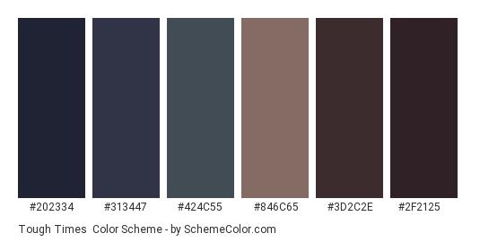 Tough Times - Color scheme palette thumbnail - #202334 #313447 #424C55 #846C65 #3D2C2E #2F2125