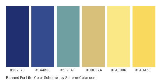 Banned for Life - Color scheme palette thumbnail - #202F70 #344B8E #6F9FA1 #D8C07A #FAE886 #FADA5E