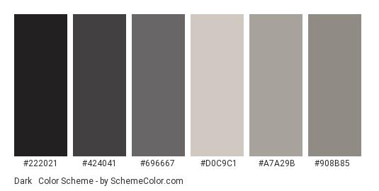 Dark & Gray Rustic - Color scheme palette thumbnail - #222021 #424041 #696667 #d0c9c1 #a7a29b #908b85
