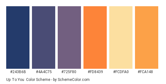 Up to You - Color scheme palette thumbnail - #243b6b #4a4c75 #725f80 #fd8439 #fcdfa0 #fca148