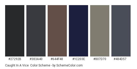Caught in a Vice - Color scheme palette thumbnail - #27292b #383a40 #644f48 #1c203e #807d70 #484d57