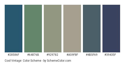 Cool Vintage - Color scheme palette thumbnail - #28586f #64876b #929782 #a59f8f #4b5f69 #39435f