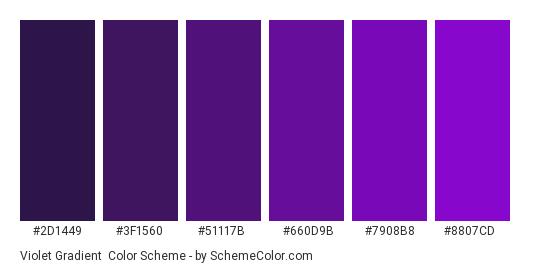 Violet Gradient - Color scheme palette thumbnail - #2d1449 #3f1560 #51117b #660d9b #7908b8 #8807cd