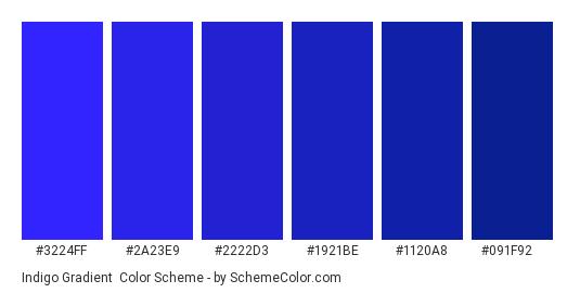 Indigo Gradient - Color scheme palette thumbnail - #3224FF #2A23E9 #2222D3 #1921BE #1120A8 #091F92