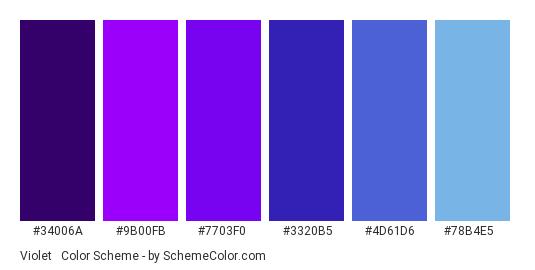 Violet & Blue - Color scheme palette thumbnail - #34006a #9b00fb #7703f0 #3320b5 #4d61d6 #78b4e5