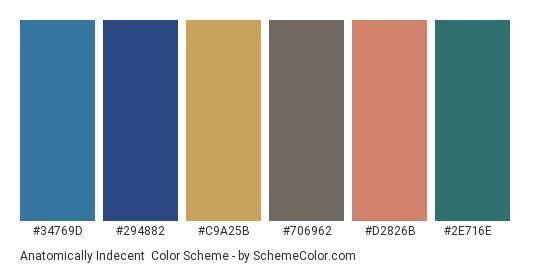 Anatomically Indecent - Color scheme palette thumbnail - #34769d #294882 #c9a25b #706962 #d2826b #2e716e