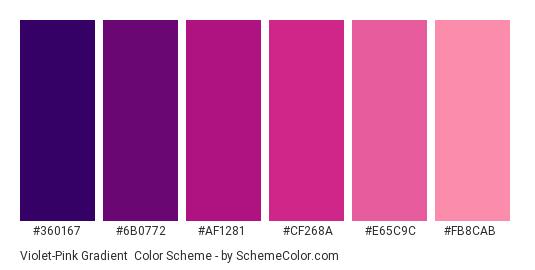 Violet-Pink Gradient - Color scheme palette thumbnail - #360167 #6b0772 #af1281 #cf268a #e65c9c #fb8cab