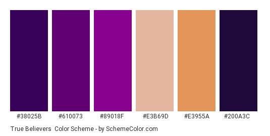 True Believers - Color scheme palette thumbnail - #38025b #610073 #89018f #e3b69d #e3955a #200a3c