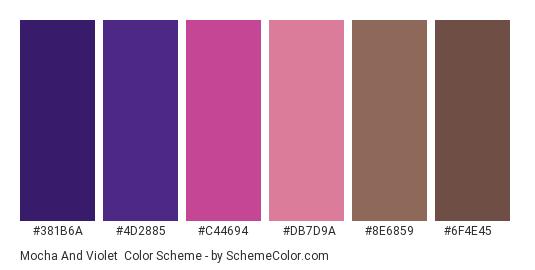 Mocha and Violet - Color scheme palette thumbnail - #381b6a #4d2885 #c44694 #db7d9a #8e6859 #6f4e45