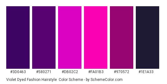 Violet Dyed Fashion Hairstyle - Color scheme palette thumbnail - #3D0463 #580271 #DB02C2 #FA01B3 #970572 #1E1A33