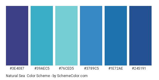Natural Sea - Color scheme palette thumbnail - #3E4087 #39AEC5 #76ced5 #3789C5 #1E72AE #245191